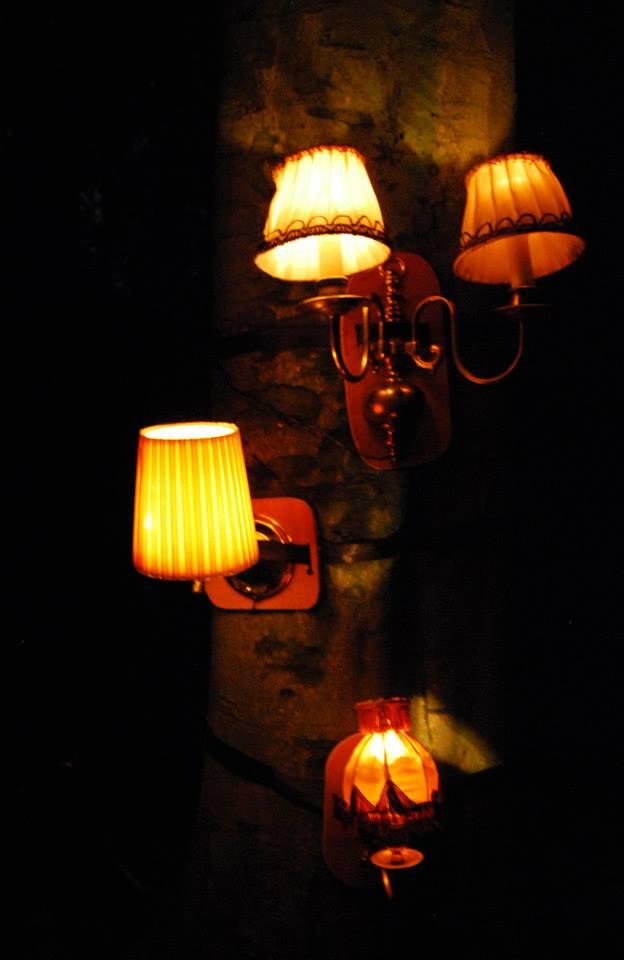 eekhoorntjesbroodlampjes